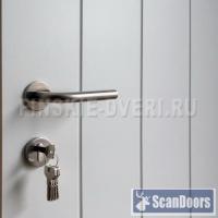 скандинавские двери входные